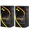 Jain Shilajit,  120 capsules