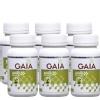 GAIA Amla (Pack of 6),  60 capsules