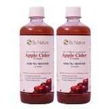 By Nature Apple Cider Vinegar (Pack Of 2),  500 Ml  Unflavoured