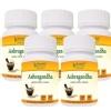 Bhumija Ashvagandha, 60 capsules - Pack of 5