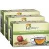 Grenera Moringa Tea,  Apple Cinnamon  20 Piece(s)/Pack  - Pack of 3