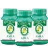 Goodcare Amla - Pack of 3 60 capsules